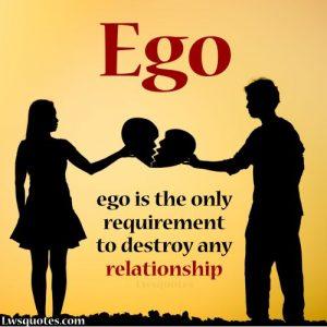 ego status