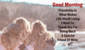 Best Good Morning Quotes For Friend