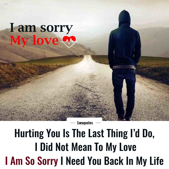 I m sorry my love messages