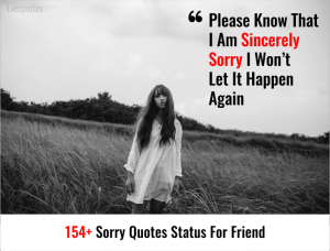 154+ Sorry Quotes Status For Friend