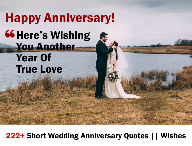 222+ Short Wedding Anniversary Quotes Wishes