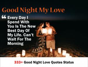 333+ good night love quotes status