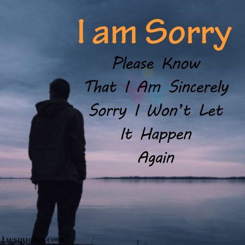 sorry quotes for friend