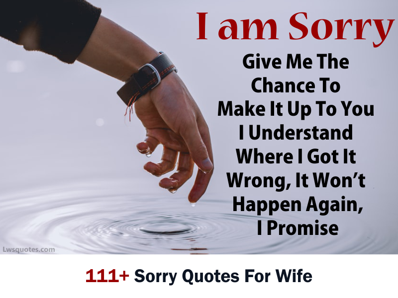 111+ Sorry Quotes For Wife 2020
